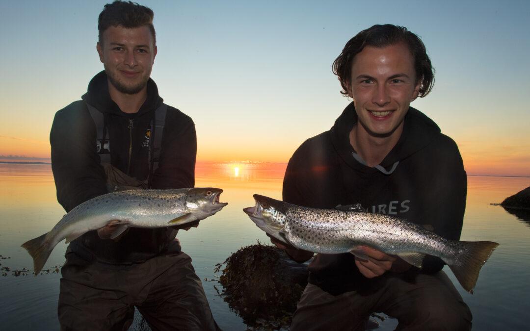Ilures på havørredfiskeri