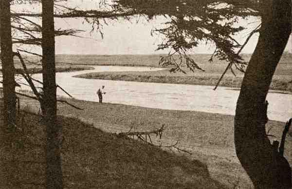 Jens far stiftede Minds-Tarp Konsortiet ved Skjern Å i 1930 og det var her Jens begyndte sit fiskeri i denne skønne Å, her ved Sdr. Felding.