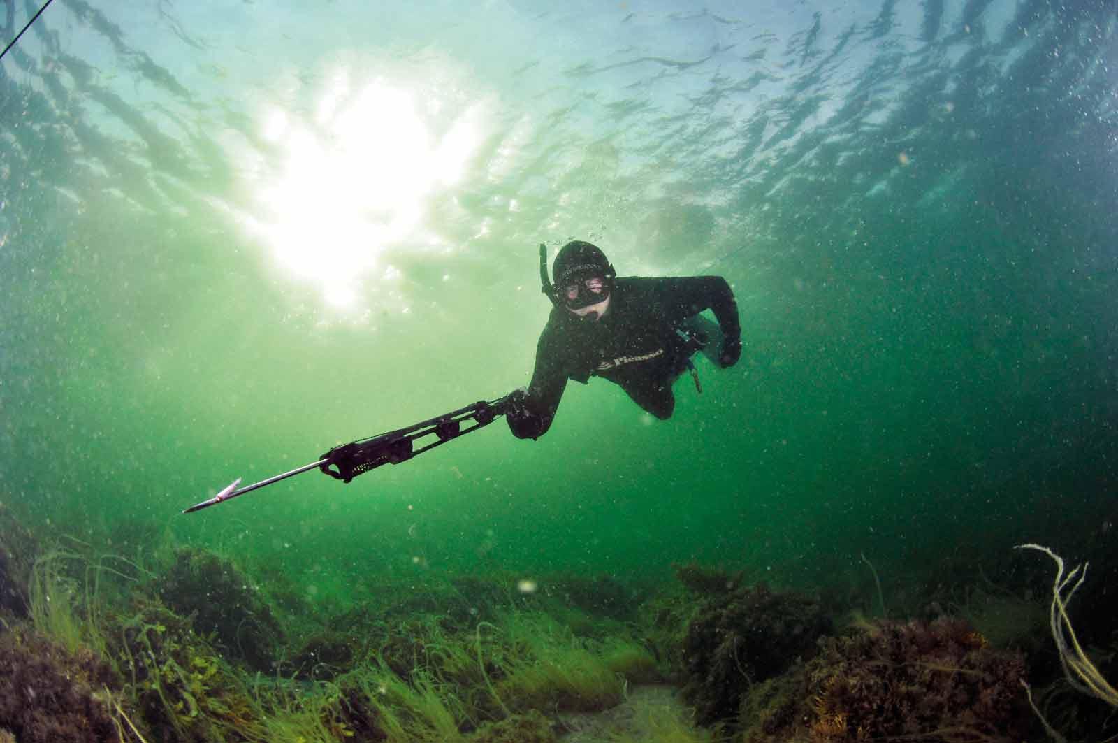 På fisketur under overfladen