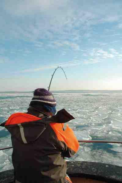Fiskeriet efter vintertorsk kan være en kold omgang, men med den rette påklædning, er det dog ikke så slemt endda.