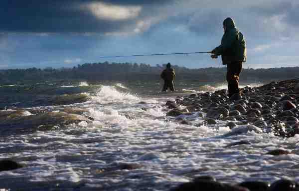 Lange sandede stræk afløst af rev eller stenplateauer er åbenlyse havørredhotspots, og kendetegnet for mange af Oddens pladser.