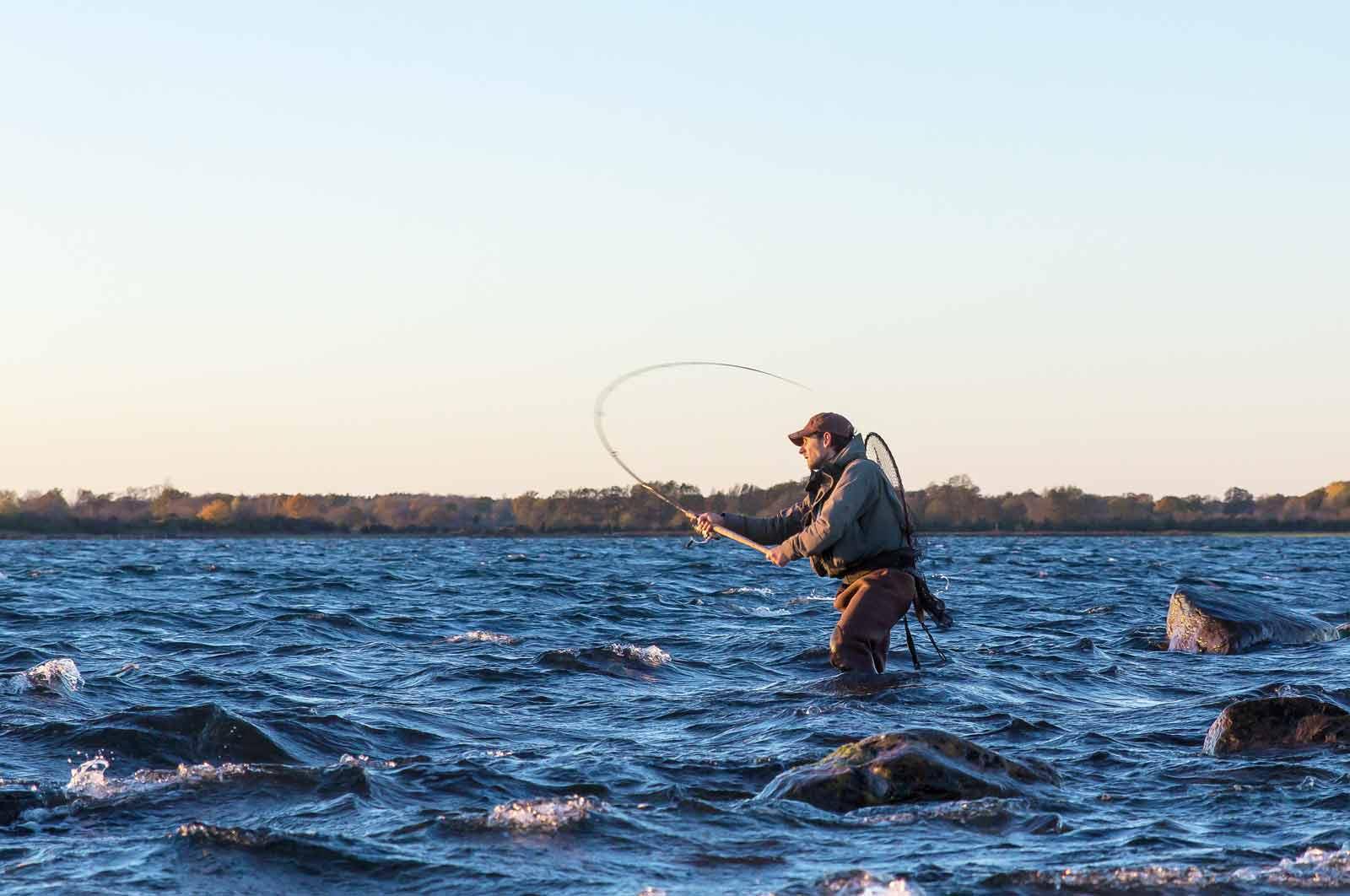 Waders ger vigtige til kystfiskeri