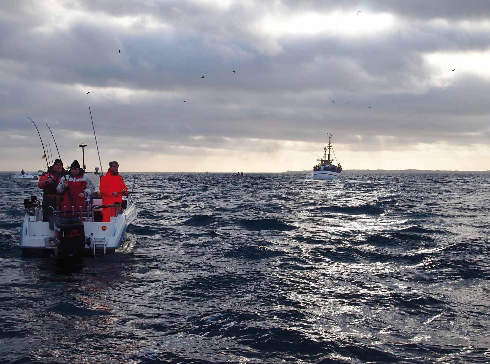 Torskefiskeri på Øresund