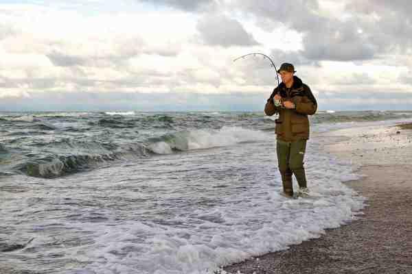 Barsen er en fantastisk fighter på traditionelt kystørredudstyr.