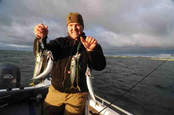 Når først man har fundet en stime makreller er der lagt op til hårde fights og god underholdning på det lette grej.