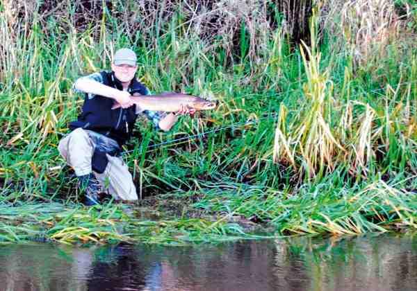 Den farvede hanfisk blev hurtigt genudsat, men sikke en dejlig bonus på en smuk efterårsdag.