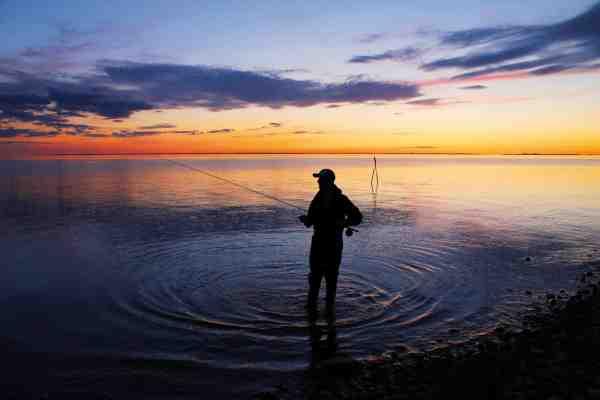Aktiviteten stiger i takt med, at mørket falder på ved Samsøs sydlige havørredhotspot.