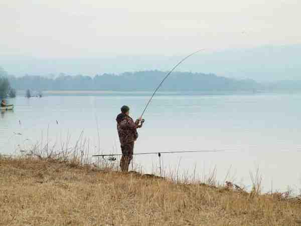 Fiskeri fra land kan være uhyre effektivt – især når man har en baitboat til at sejle agnen ud.