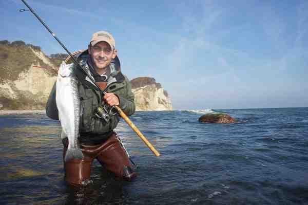 Der er andre fisk end havørreder, som svømmer rundt langs Østersøens kolde kyster. Her ses artikelforfatteren med en hårdtkæmpende steelhead.