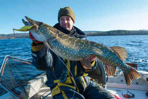Ola Nilsson med en trollingfanget storgedde taget på en Zalt-wobler fisket på en snoet tafs af fluorocarbon.