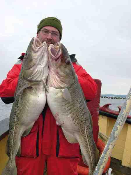 Typiske rogntunge torsk, er det som lokker tusindvis af lystfiskere på havet, i de kolde måneder.