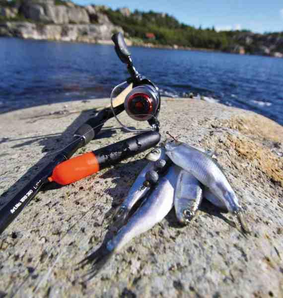 Flådfiskeri med brisling eller mindre sild er en uhyre effektiv havørredmetode. Som flåd fungerer mindre geddeflåd fortræffeligt.