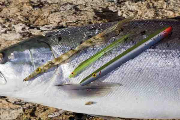 Som så mange andre steder i Østersøen er tobiser ofte vejen til succes, når de store blankfisk skal på land. Her er tre gode imitationer.