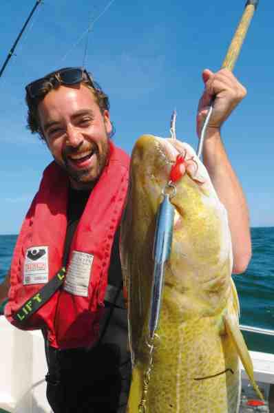 Sommertorskene kæmper fortræffeligt – og alle metoder virker. Denne fisk huggede på en pirk.