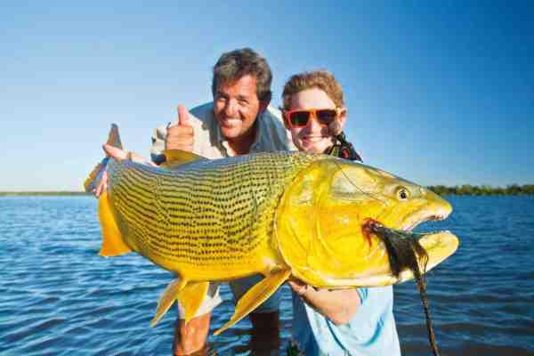 Doroadoen er bomstærk – og med fisk i denne størrelse er du spændt godt for med fluestangen.