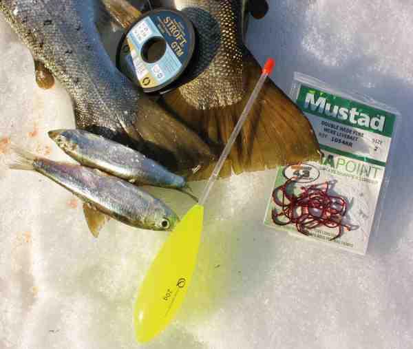 Bombardaflåd fungerer også fint til havørredmede. Især når man fisker med større agn er det vigtigt lige at give lidt friline i det samme fisken hugger, så den kan få agnen ordentligt ind i munden, inden man gør modhug.