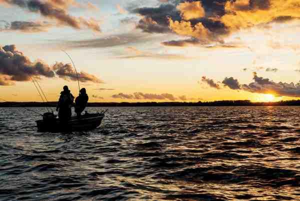 Fast fisk i det tidlige forår er ofte belønningen for en god portion tålmodighed – men når de så endelig hugger er der god chance for, at det er en af de helt tunge madammer.