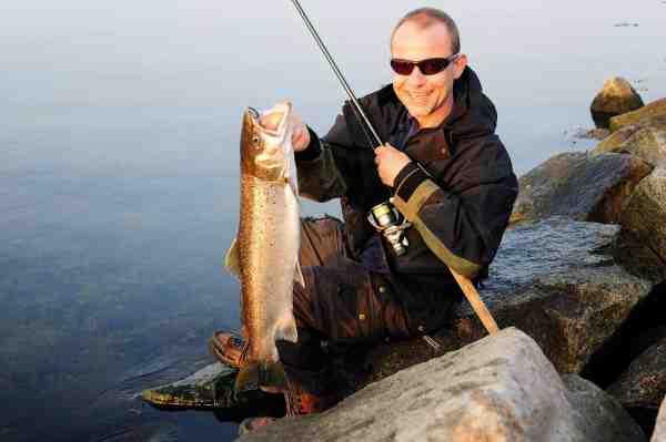 Når vandet er varmt – d.v.s over 6-8 grader – skal agnen ofte have fuld speed – også når der fiskes med bombarda.