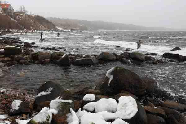 Pålandsvind og store bølger er ekstra hårdt om vinteren, men det er vejen til sølv på Bornholm.