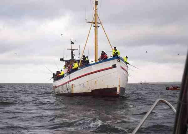 Svenske Vandia i vanlig stil med fisk i rigelige mængder. Der er gode muligheder for at få rigeligt med torsk med hjem lige nu.