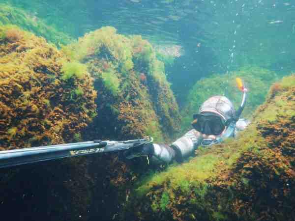 Præcis som ved mange former for lystfiskeri, gælder det ofte om at snige sig frem mod det intetanende bytte.