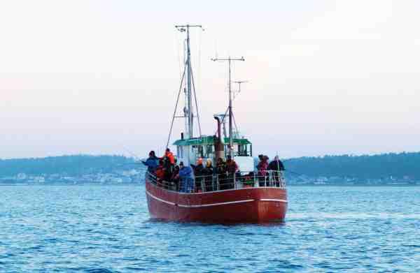 Klokken ringer og pirkene ryger til bunds fra turbåden. Dette er et fiskeri, hvor alle kan være med.