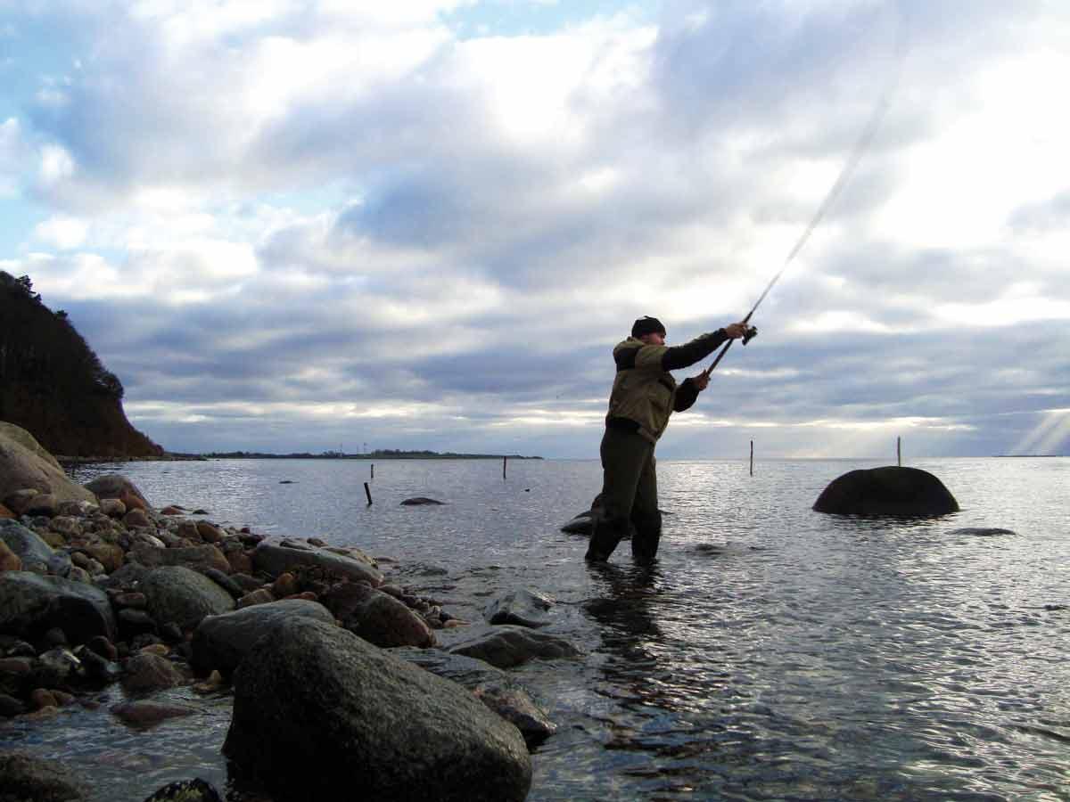 Kystfiskeri på sydfyn