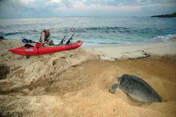 En stille morgenstund før solen bryder frem. Selvom fiskeriet trækker, er det livsbekræftende at se havskildpadden møjsommeligt begrave sine æg og sikre næste generation.