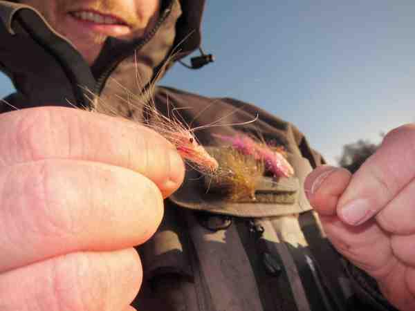Fluen bindes med en Rapala-knude her fremvist med en af Nicolais rejeimitationer til forårsfiskeriet.
