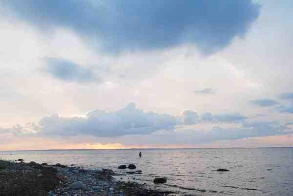 Isefjorden byder på et væld af gode pladser. Om vinteren kan ørrederen findes alle steder. Kig efter bælter med blæretang, aflange muslingebanker, solvarme sandpartier – eller stenrev og pynter – så er du godt på vej til at finde fiskene.