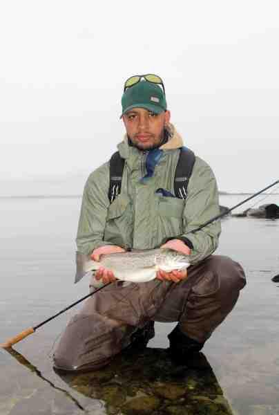 En flot målsfisk fra tangbæltet. Denne lille tyksak tog en lille rejeimitation fisket i små ryk.