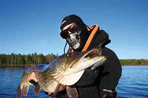 Christian Møller har haft stor succes med at fiske sine døde agn på de nye Lip Scull's fra Savage Gear. Her er det en flot svensk gedde, der faldt for bedraget.