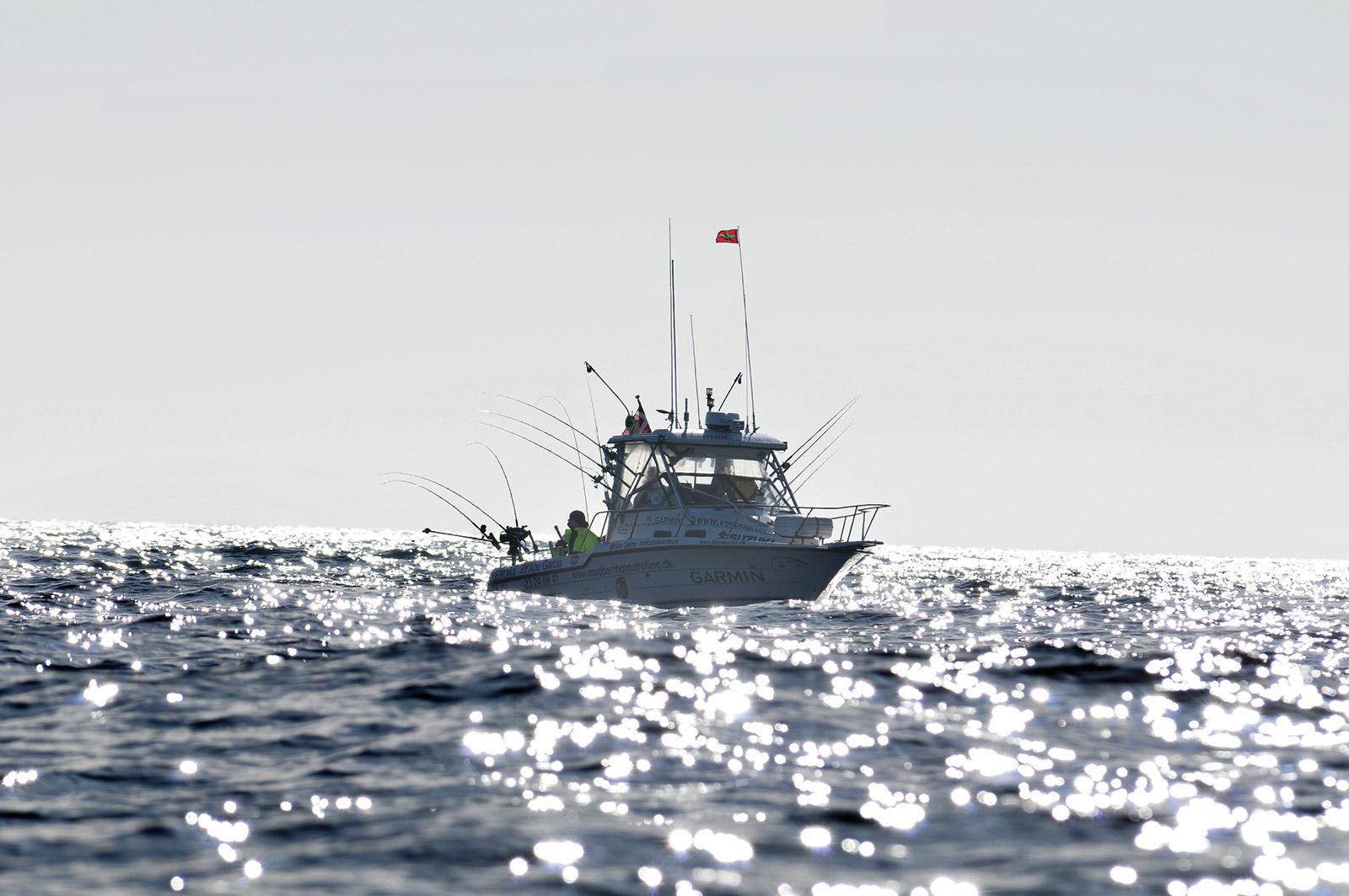 Erfaringer fra opstart med trollingfiskeri - båd, grej og teknikker.