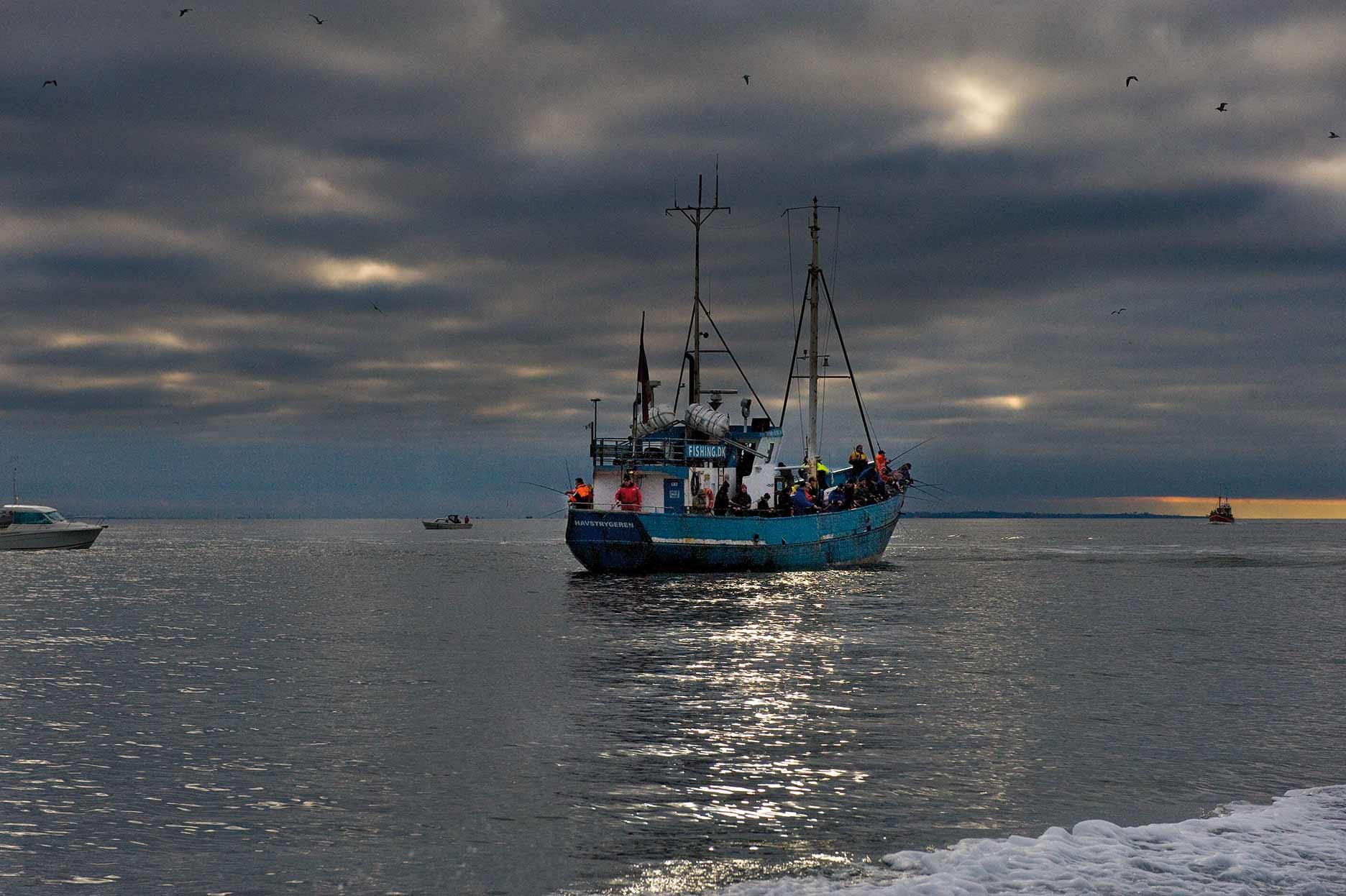 Havfiskeri efter torsk på Øresund