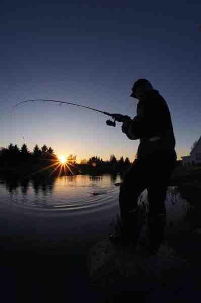 Ørsted Fisk & Golf er en blandt mange søer hvor der må fiskes hele natten. Her er det endda muligt at leje hytter, så man også kan få hvilet lidt.