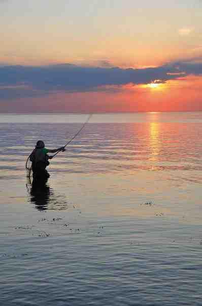 I Østen stiger solen op. Og for lystfiskeren der gider stå tidligt op selv, for at tage turen til Østfyn med fiskegrejet er der gode chancer for at blive belønnet med sølvtøj.