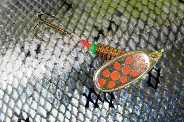 Vil du maksimere chancen for at kunne genudsætte en dybtkroget fisk i levende live er det mest skånsomt at montere din spinner som en gennemløbsspinner – se hvordan på www.bursell.dk
