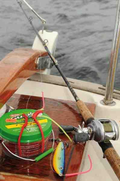 Gulp Alive børsteorme kan holde sig i månedsvis, og er perfekte til bare at have liggende i sejlbåden. Så er man altid klar til at fiske lidt fladfisk enten fra båden, eller i en af de havne man evt. overnatter i.
