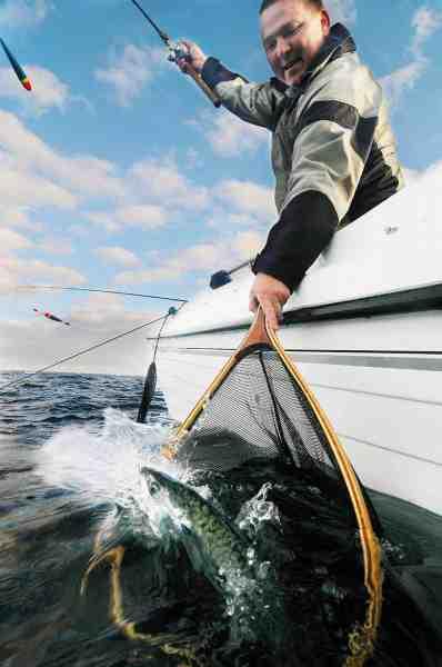 Jesper Larsen har i den grad styr på makrellerne og her lander han endnu en af slagsen.