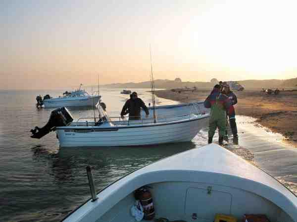 Et gæng friske småbådsfiskere trækker deres både op på Vestkysten efter en god dag på havet.