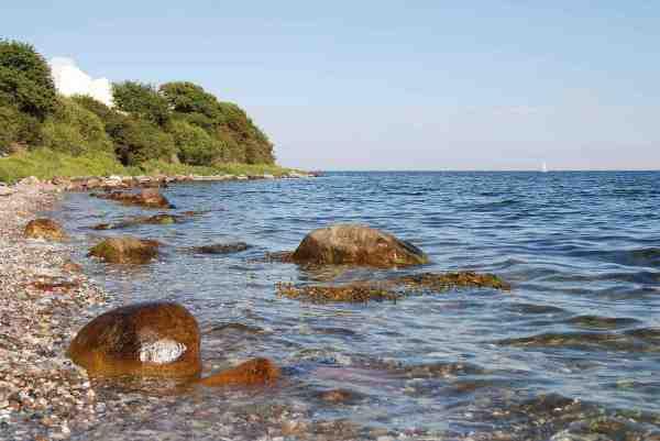 Stavre er ikke alene et smukt stræk. De mange store sten tiltrækker også byttedyr og havørred.