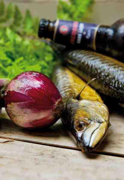 Røget fisk er som regel rig på både fedt og røgaroma. Denne konstellation kræver dels alkohol og dels smagsmæssige noter, der spiller sammen med den røgede smag. Det finder man i en mørk lager øl som Jacobsen Dark Lager
