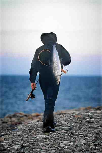 Ølands kyster er et af de steder i Sydsverige, hvor der er rigtig gode chancer for grove fisk.