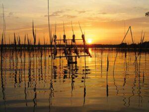 Karpefiskeri i Sorø Sø