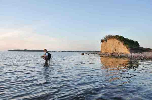 Der er ikke særligt dybt omkring Langø og fiskeri med bombarda og flue er en oplagt metode.