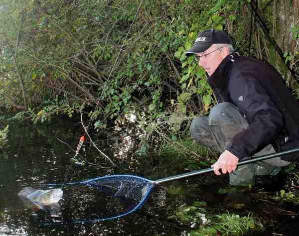 Forfatteren gør klar til at lande en velvoksen aborre, der huggede på en skalle fisket under et flåd