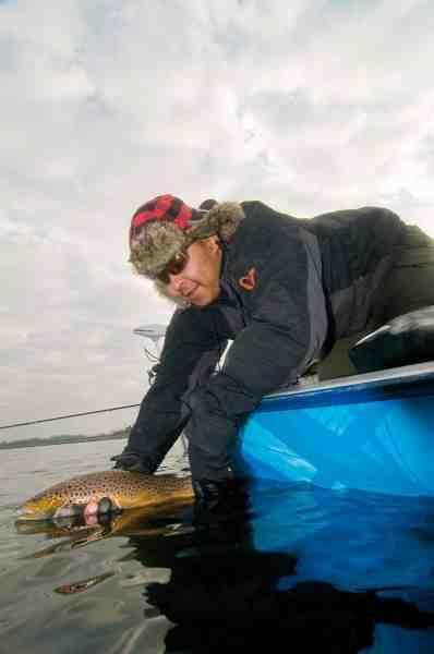 Kim Jønsson genudsætter en typisk farvet fjordørred. Fisken huggede på en Frede med Blodtud fisket på flydeline.