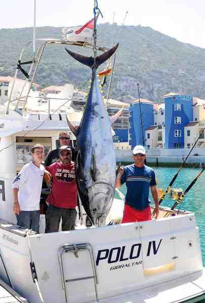 Polo IV har i de sidste otte år fanget godt med tun, og en del over 200 kilo, som denne på 206 kilo. Deres største til dato er på 275 kilo, og deres kollegaers største er på 490 kilo!