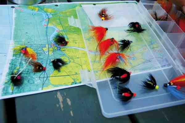 Som noget relativt nyt er der blevet oprettet fire rene fluefiskestrækninger: P-K Hall, Jiises Pool, Bryggan og Svinaholmen. Her svinges tohåndsstængerne særligt i den tidlige del af sæsonen, hvor det er blanklaksene, der fiskes efter.