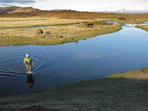 Minnivallalækur er åen med nogle af Islands største bækørred – men de er rigtig svære at få i tale.
